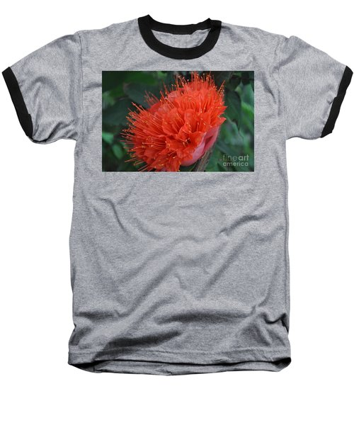 Beauty Baseball T-Shirt
