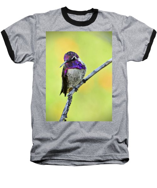 Costas Hummingbird  Baseball T-Shirt