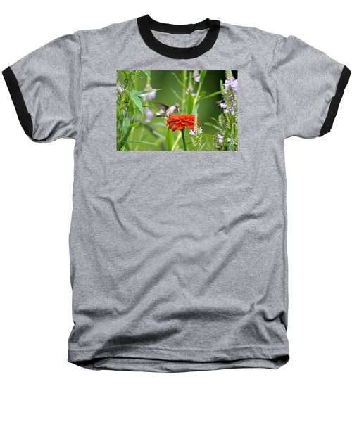 Baseball T-Shirt featuring the photograph Humming Bird by Lila Fisher-Wenzel