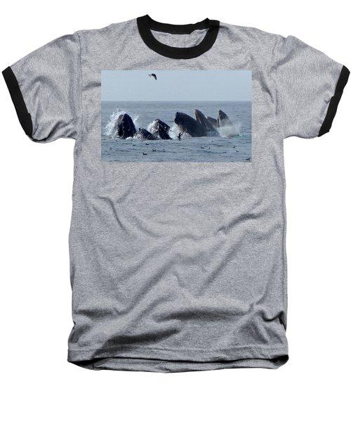 5 Humpbacks Lunge Feeding  Baseball T-Shirt