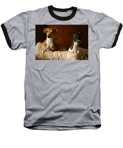 Italian Greyhounds Baseball T-Shirt