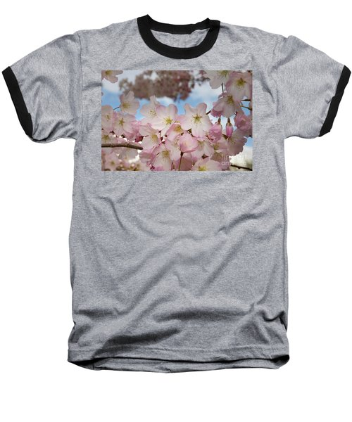 Silicon Valley Cherry Blossoms Baseball T-Shirt by Glenn Franco Simmons