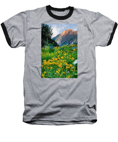 Wasatch Mountains Baseball T-Shirt by Utah Images