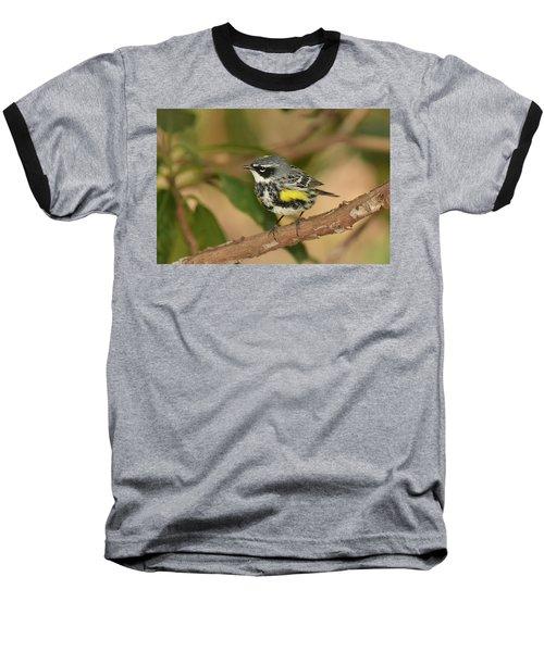 Yellow-rumped Warbler Baseball T-Shirt by Alan Lenk