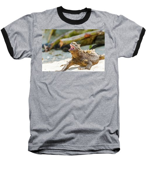 Baseball T-Shirt featuring the photograph Marine Iguana On Galapagos Islands by Marek Poplawski
