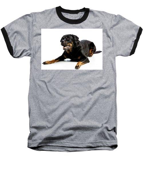 Rottweiler Dog Baseball T-Shirt
