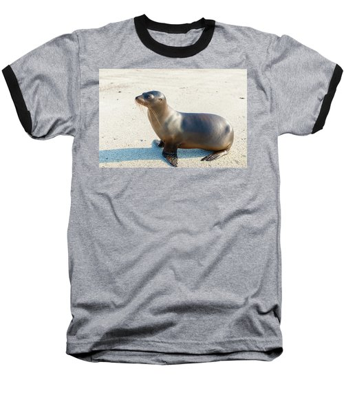 Sea Lion In Galapagos Islands Baseball T-Shirt