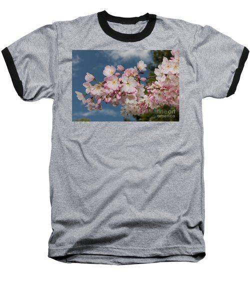 Silicon Valley Cherry Blossoms Baseball T-Shirt