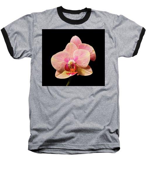 Stunning Orchids Baseball T-Shirt