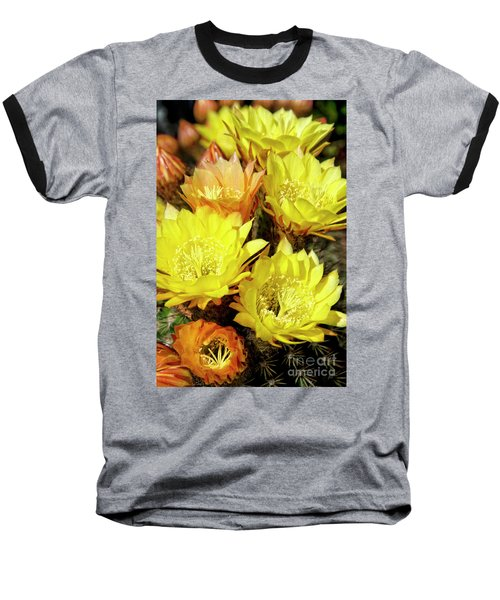 Yellow Cactus Flowers Baseball T-Shirt by Jim And Emily Bush