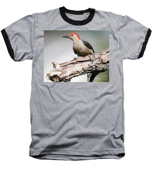 Red-bellied Woodpecker Baseball T-Shirt