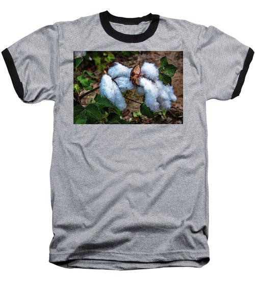 8 Bolls Of Cotton  Baseball T-Shirt