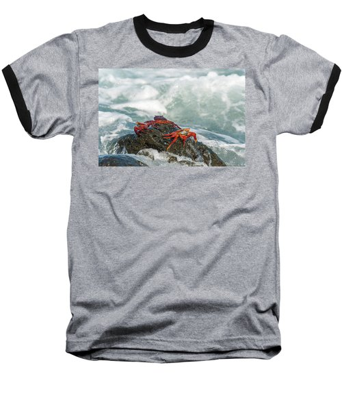 Baseball T-Shirt featuring the photograph Sally Lightfoot Crab On Galapagos Islands by Marek Poplawski