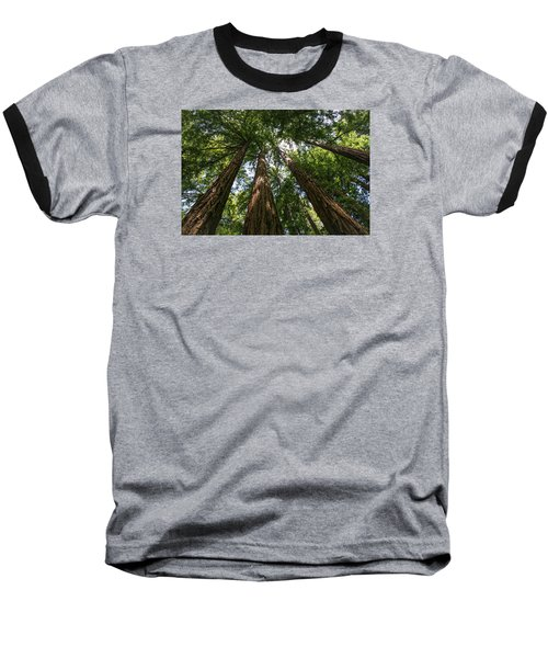 #8732 - Redwoods Baseball T-Shirt
