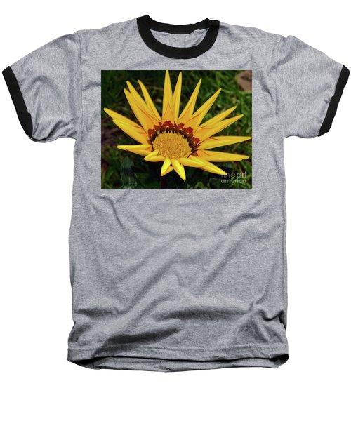 Baseball T-Shirt featuring the photograph Yellow Gazania by Elvira Ladocki