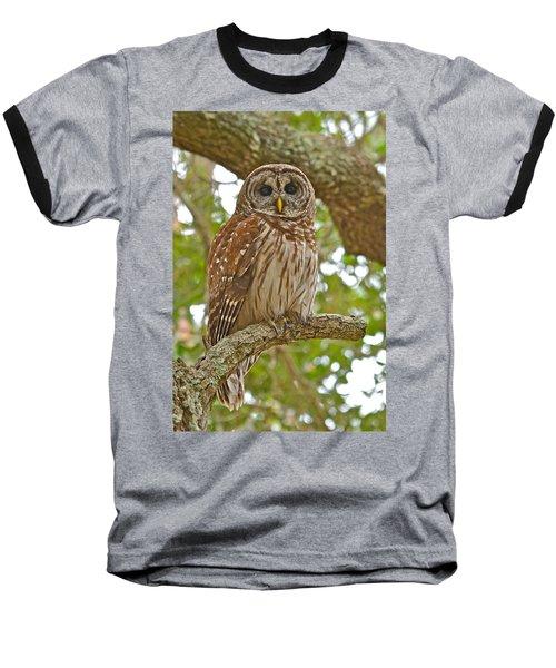 A Barred Owl Baseball T-Shirt