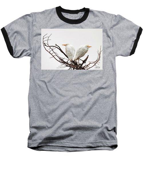 A Basket Of Anger Baseball T-Shirt by Cyndy Doty