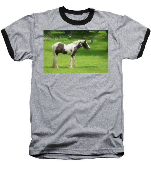 A Beautiful Young Gypsy Vanner Standing In The Pasture Baseball T-Shirt
