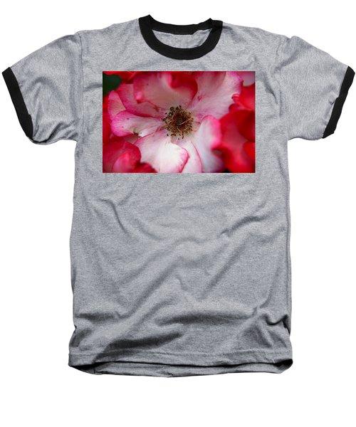 A Bee's Heaven Baseball T-Shirt