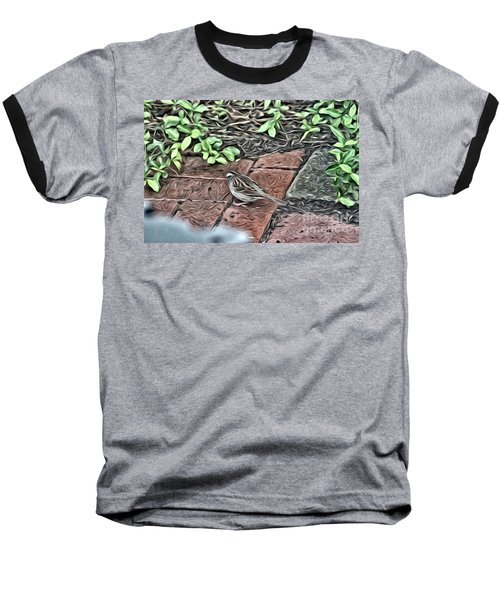 A Birds Life Baseball T-Shirt