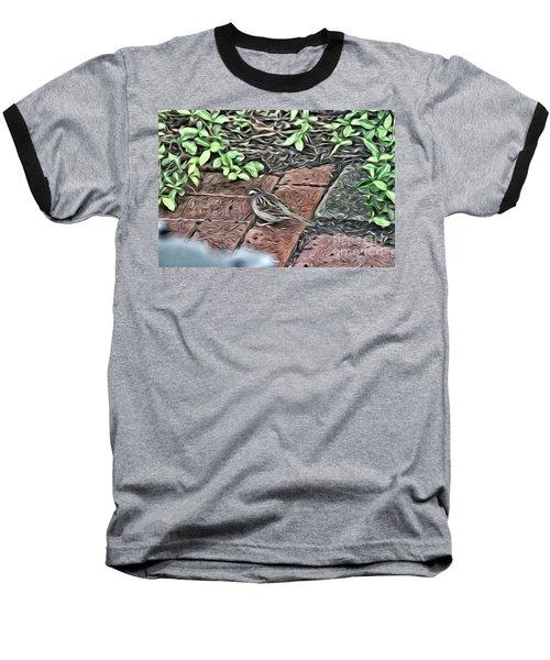 A Birds Life Baseball T-Shirt