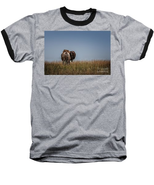 A Bison Interrupted Baseball T-Shirt