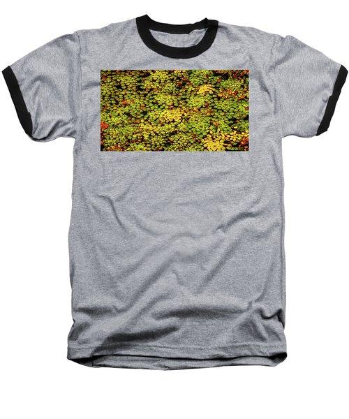 A Botanical Mosaic Baseball T-Shirt
