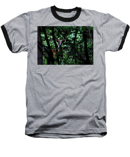 A Buck Peers From The Woods Baseball T-Shirt by Bruce Patrick Smith