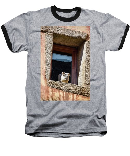 A Cat On Hot Bricks Baseball T-Shirt