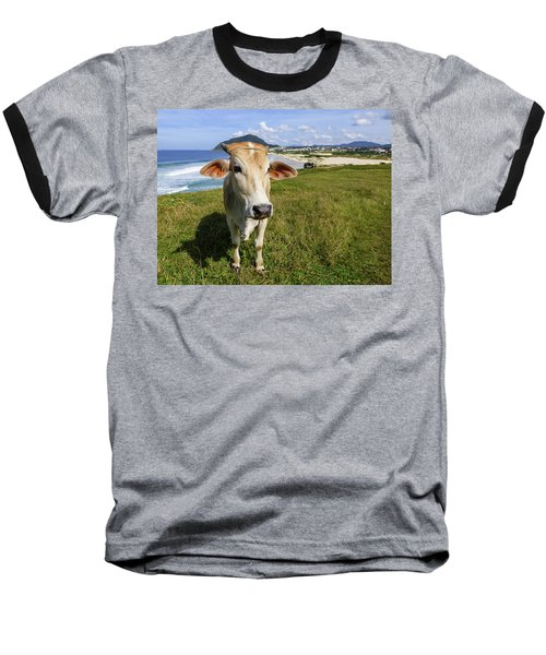A Cow At The Beach Baseball T-Shirt