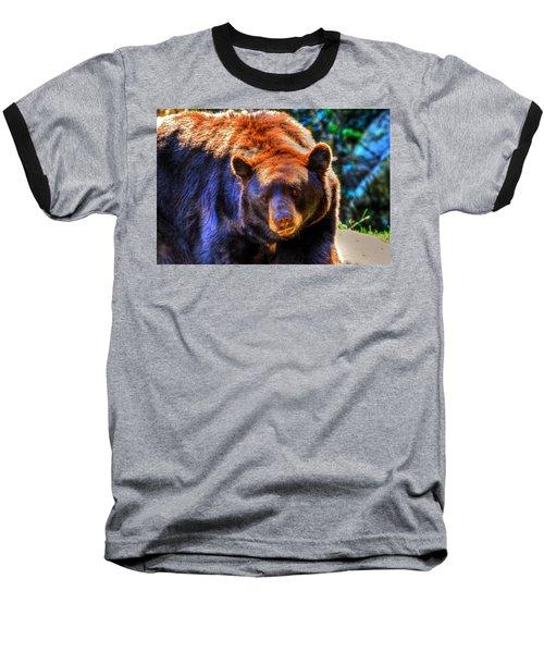 A Curious Black Bear Baseball T-Shirt