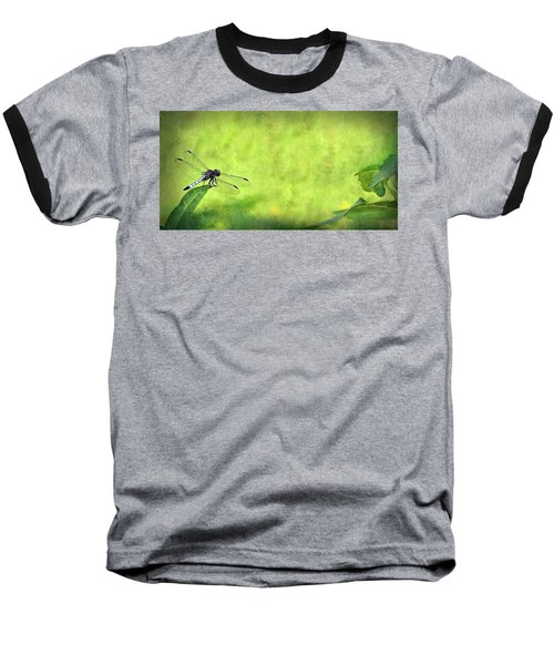 A Day In The Swamp Baseball T-Shirt by Mark Fuller