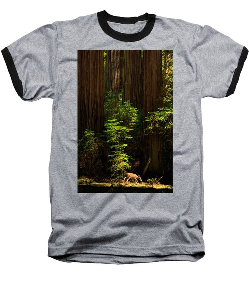 A Deer In The Redwoods Baseball T-Shirt