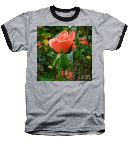 A Delicate Pink Rose Baseball T-Shirt