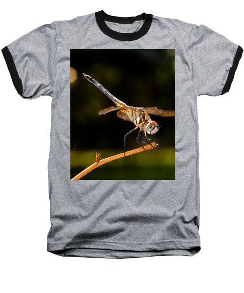 A Dragonfly Baseball T-Shirt
