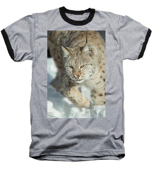 A Eurasian Lynx In Snow Baseball T-Shirt