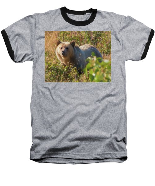 A  Female Grizzly Bear Looking Alertly At The Camera. Baseball T-Shirt