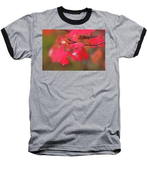 A Flash Of Autumn Baseball T-Shirt
