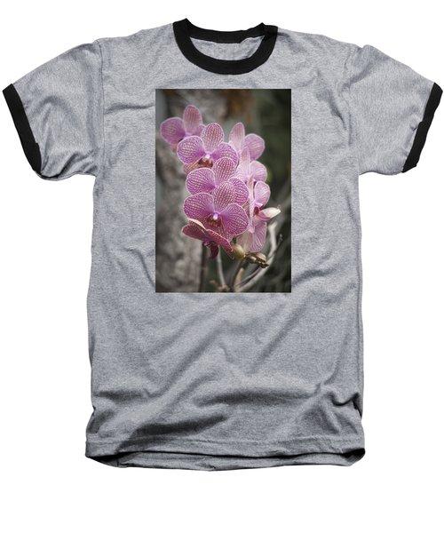 A Flight Of Orchids Baseball T-Shirt by Morris  McClung