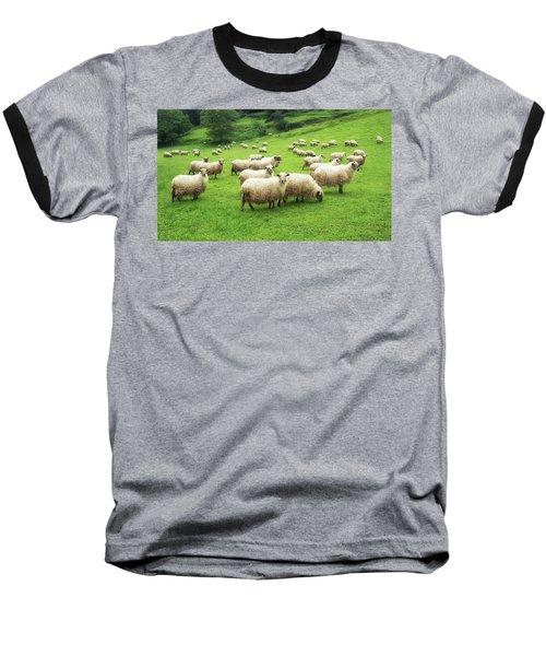 A Flock Of Sheep Baseball T-Shirt
