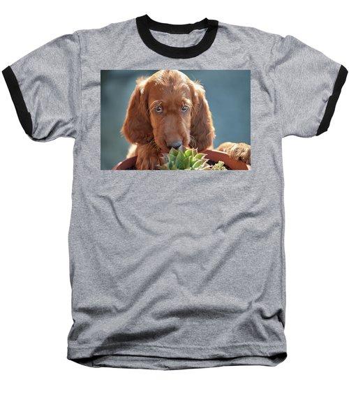A Gardener Baseball T-Shirt