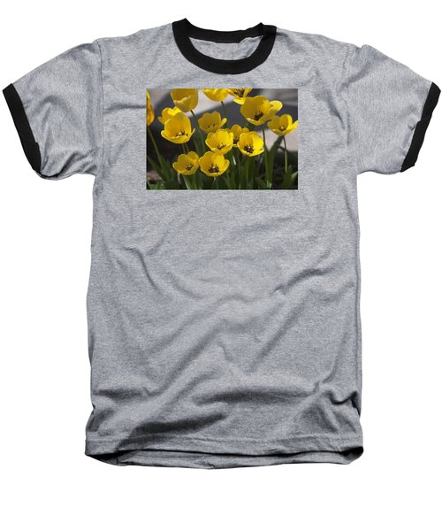 A Gathering Of Tulips Baseball T-Shirt by Morris  McClung