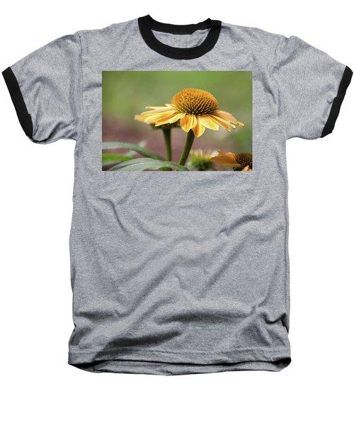 A Golden Echinacea -  Baseball T-Shirt