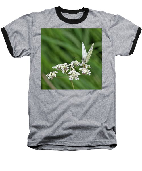 A Green-veined White (pieris Napi) Baseball T-Shirt