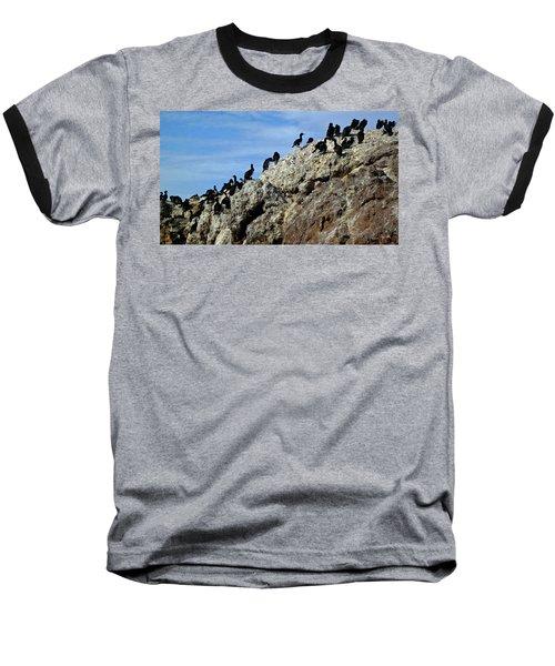 A Gulp Of Cormorants Baseball T-Shirt