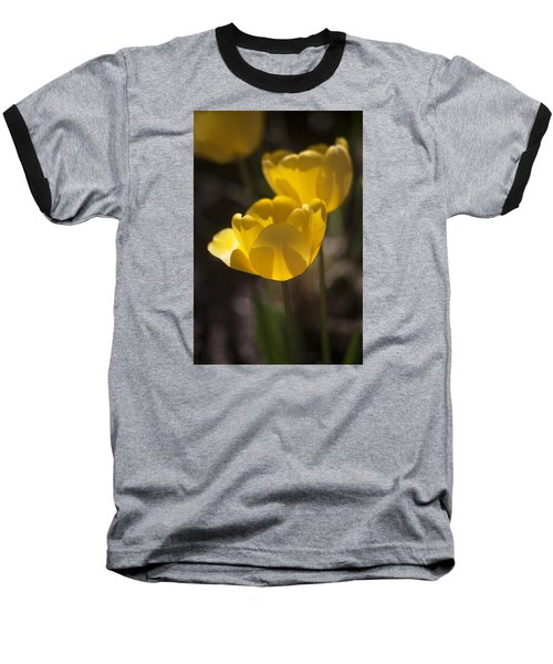 A Happy Spring Moment Baseball T-Shirt by Morris  McClung