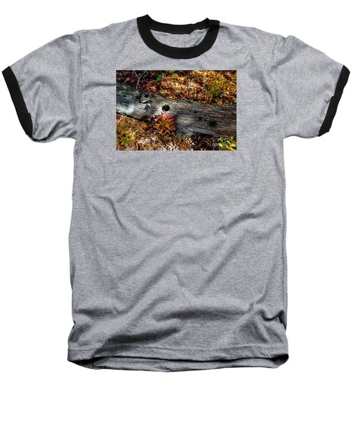 A Hole In A Log Baseball T-Shirt