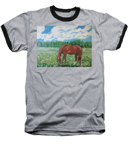 A Horse Named Dante Baseball T-Shirt