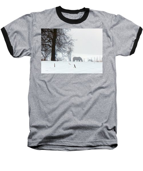 A Horse Of A Different Color Baseball T-Shirt