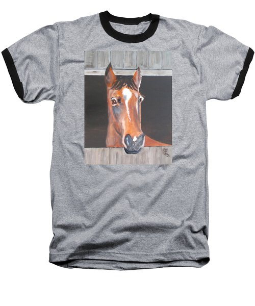 A Horse With No Name Baseball T-Shirt by Carole Robins